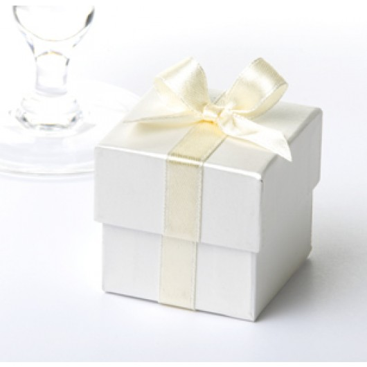 Ribbon Favour Boxes 10 Pack - Cream with Cream Ribbon