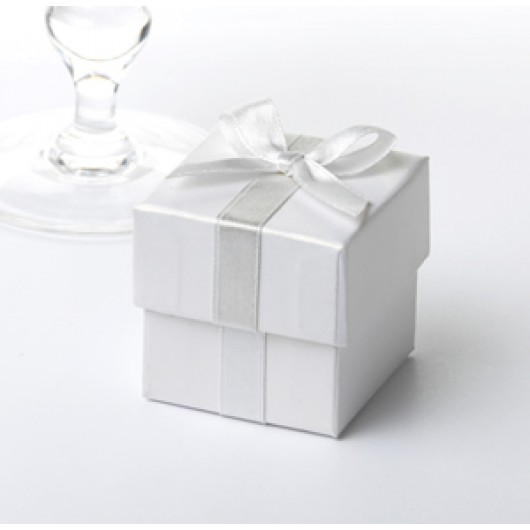 Ribbon Favour Boxes 10 Pack - White with Silver Ribbon