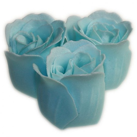 'Something Blue' Bath Roses