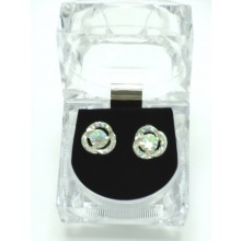 Stone Stud Earrings In Lovely Crystal Box